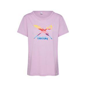Iriedaily Tričko 'Flagcolor Tee'  šeříková