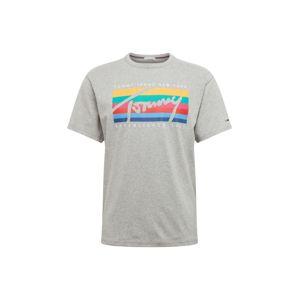 Tommy Jeans Tričko  šedá / mix barev