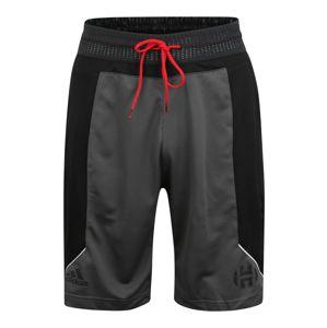 ADIDAS PERFORMANCE Sportovní kalhoty 'HARDEN SHORT'  tmavě šedá / černá