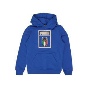 PUMA Mikina 'FIGC PUMA DNA Hoody Jr'  modrá