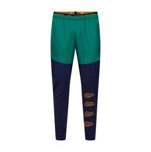 NIKE Sportovní kalhoty 'M NK THRMA PANT PX'  tmavě modrá / zelená