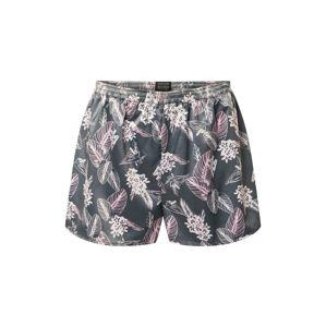 SCHIESSER Pyžamové kalhoty  šedá / růžová