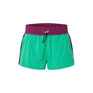 DIESEL Kalhoty 'FLYNN'  zelená / fialová