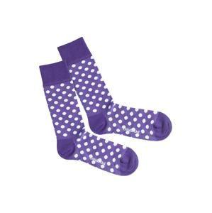 DillySocks Ponožky 'Purple Dots'  fialová / bílá