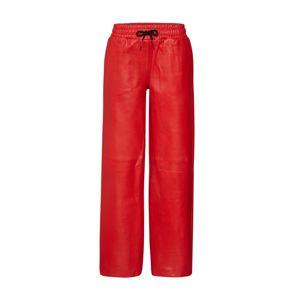 BE EDGY Kalhoty 'BEcarolina'  červená
