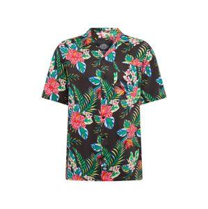 DICKIES Košile 'SHILOH'  černá / mix barev