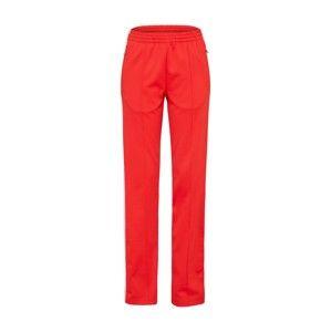 Calvin Klein Jeans Kalhoty  červená